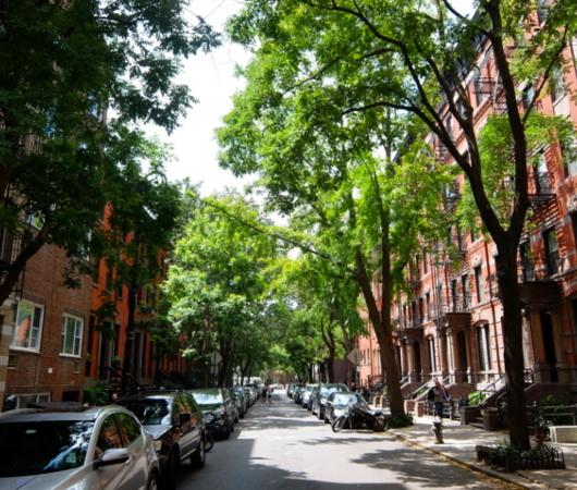 自然と共存するグリニッジ・ビレッジの美しい街並み_b0007805_00252718.jpg