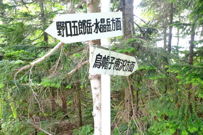 2019夏休み 一人登山 裏銀座縦走 その1_e0000910_10111888.jpg