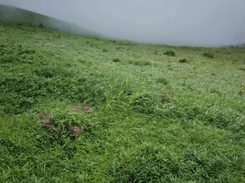 箱根駒ヶ岳_e0276411_00330260.jpg