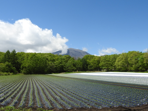 浅間山の噴火警戒レベルが3→2に下がりました(2019年8月19日)_b0174425_00305087.jpg