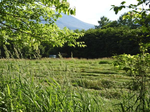 浅間山の噴火警戒レベルが3→2に下がりました(2019年8月19日)_b0174425_00370001.jpg