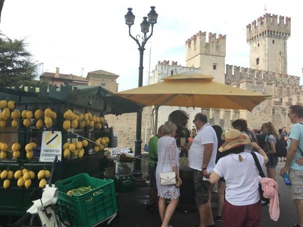 2019夏のイタリア旅行記18 自転車でシルミオーネ温泉_d0041729_18450251.jpg