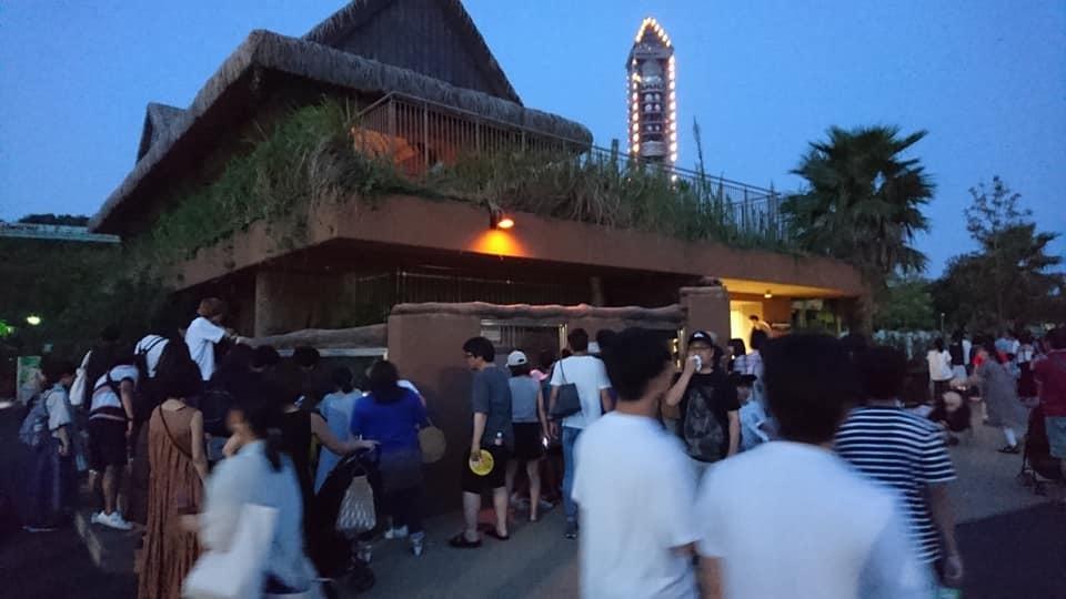 東山動植物園ナイトズー2019 最終日!_f0373339_13423222.jpg