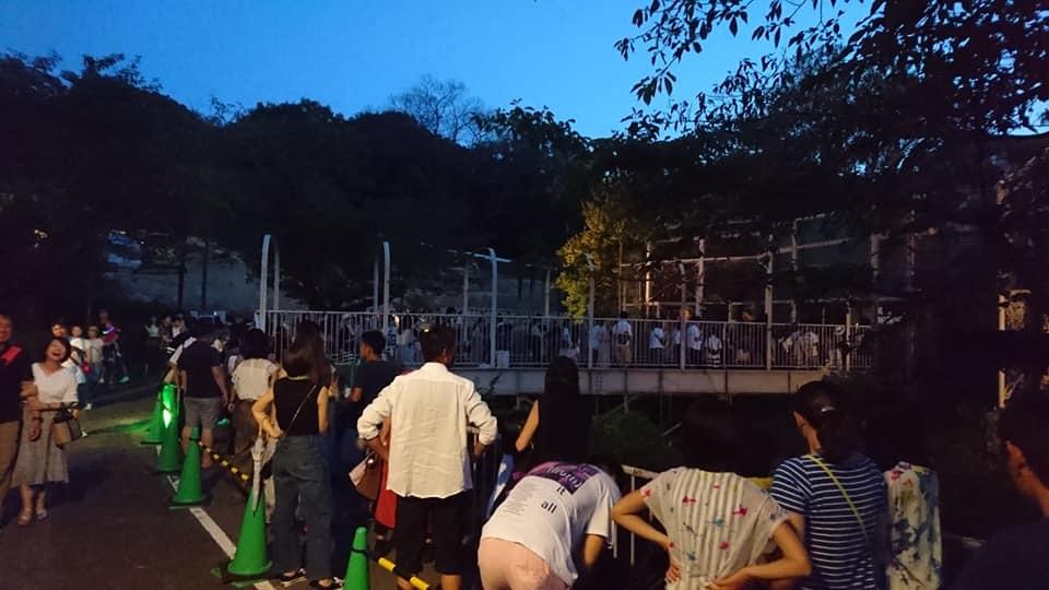 東山動植物園ナイトズー2019 最終日!_f0373339_13423226.jpg