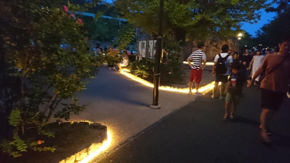 東山動植物園ナイトズー2019 最終日!_f0373339_13423227.jpg