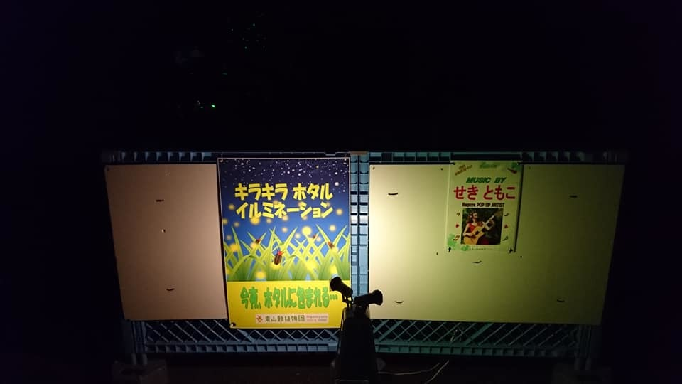 東山動植物園ナイトズー2019 最終日!_f0373339_13595431.jpg