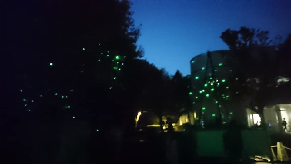 東山動植物園ナイトズー2019 最終日!_f0373339_14033739.jpg