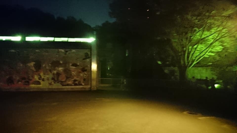 東山動植物園ナイトズー2019 最終日!_f0373339_14180644.jpg