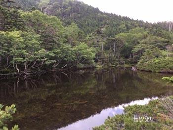 八ヶ岳_a0335352_08514885.jpg