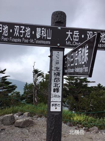 八ヶ岳_a0335352_08521391.jpg