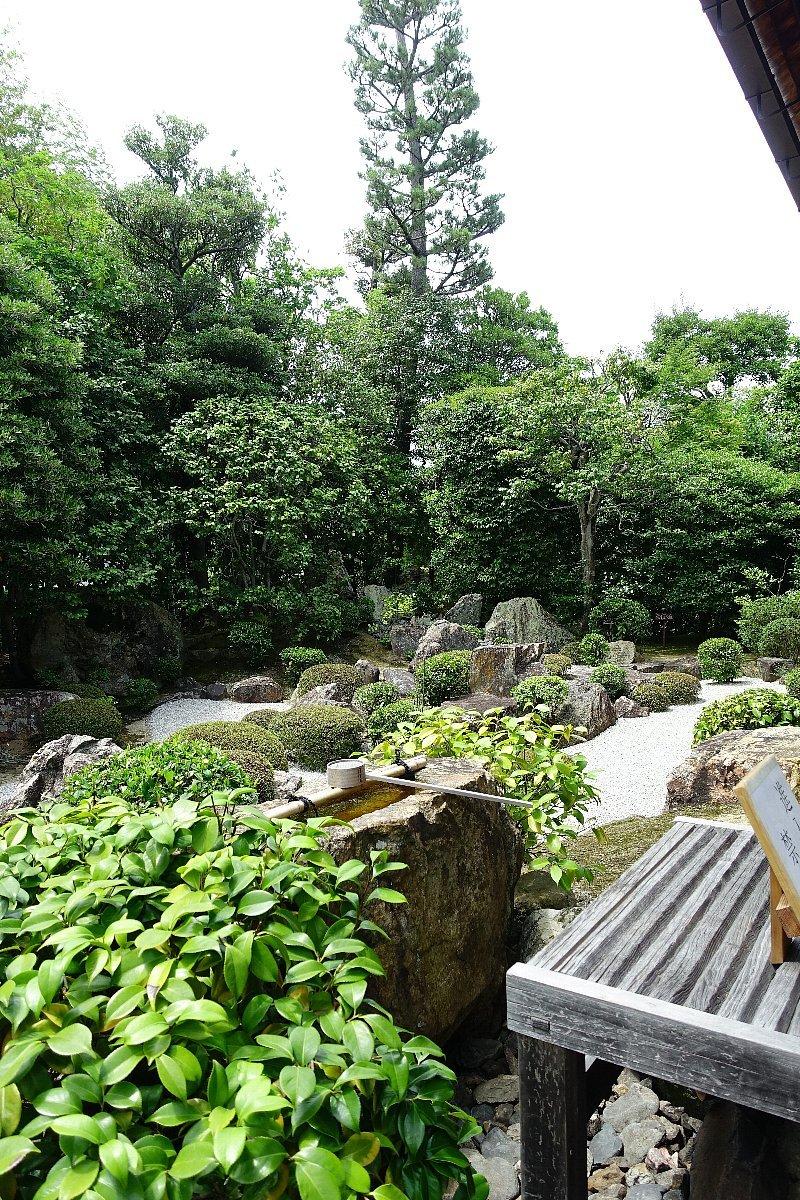 妙心寺 退蔵院(その2)元信の庭_c0112559_08343819.jpg