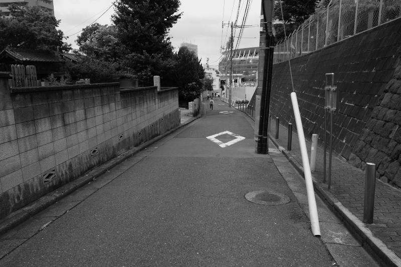 東京の坂道 #38-4 勢揃坂、観音坂、鳩森八幡神社_f0079061_17524344.jpg