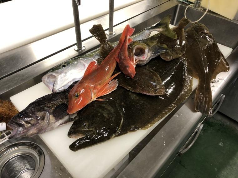 釣りに行ってきました🎣_b0185375_22383574.jpeg