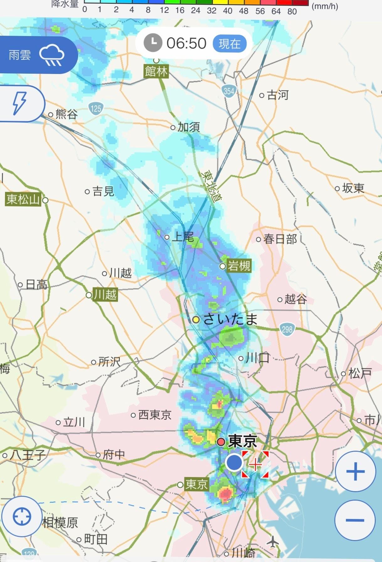 港区辺だけ集中豪雨、とレモンにはらぺこあおむし_e0397389_16233366.jpeg