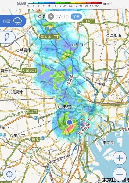 港区辺だけ集中豪雨、とレモンにはらぺこあおむし_e0397389_16234111.jpeg
