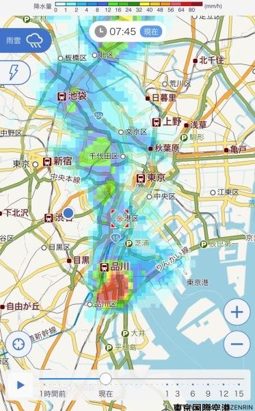 港区辺だけ集中豪雨、とレモンにはらぺこあおむし_e0397389_16234834.jpeg