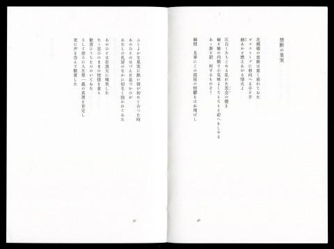 一九三〇年代モダニズム詩集―矢向季子・隼橋登美子・冬澤弦_f0307792_19405286.jpg