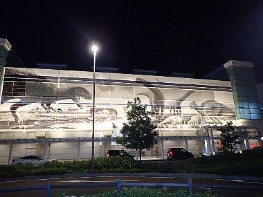 8月11日(日)12日(月祝)福井県越前TOUR&講習★_f0079996_14291407.jpg