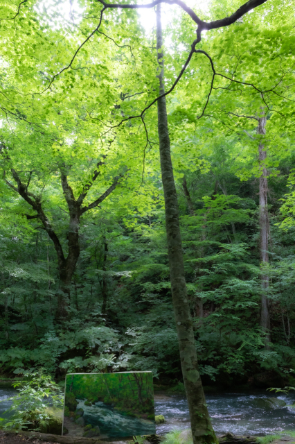 樹々の息吹と自然界の残酷_a0158797_19354771.jpg