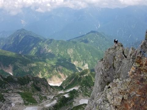 剱岳 チンネ左稜線・八ツ峰上半部_d0237801_22404693.jpg