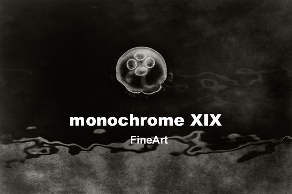 monochrome XIX「FineArt」後半の3週目の2日目、本日もご来館頂きました皆様ありがとうございました!_b0194208_22481875.jpg