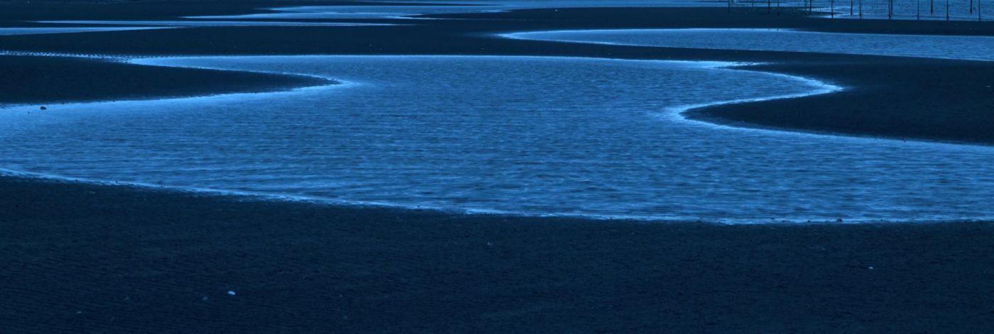 干潟はアート_c0104227_23165851.jpg