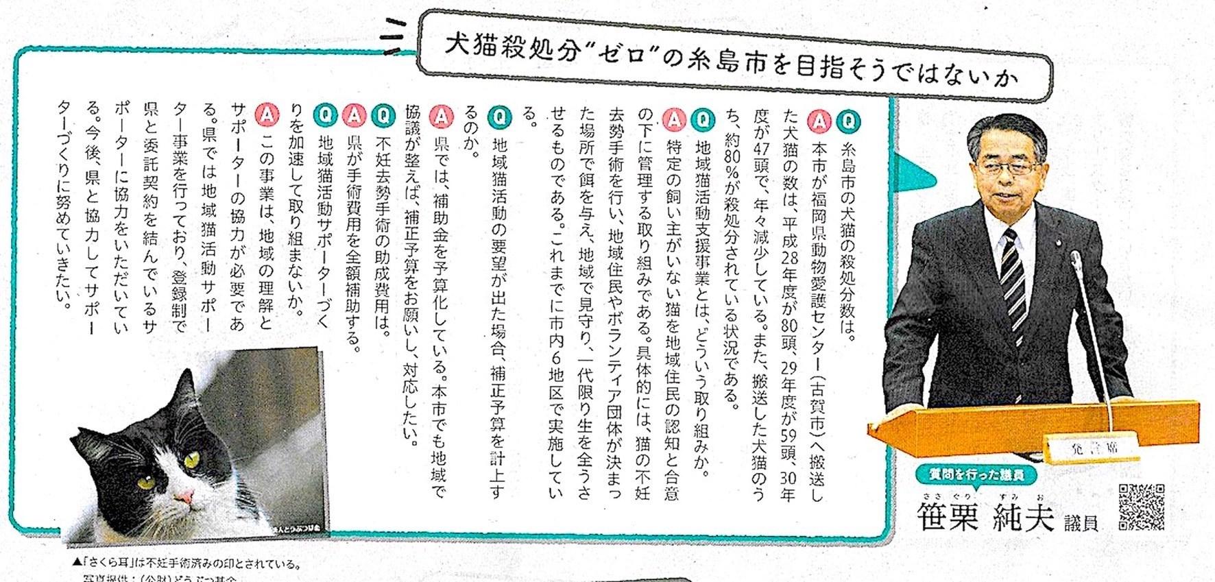 糸島市 殺処分ゼロを目指そう?_d0073743_22353584.jpeg