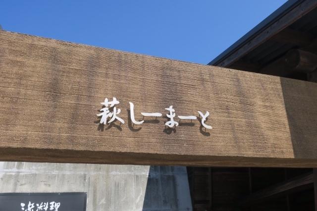 夏の記憶②  鹿児島〜阿蘇〜萩〜出雲_c0274374_16510963.jpeg