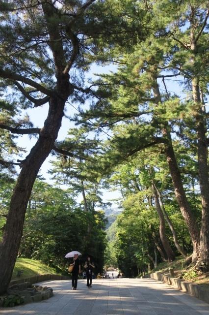 夏の記憶②  鹿児島〜阿蘇〜萩〜出雲_c0274374_16554734.jpeg