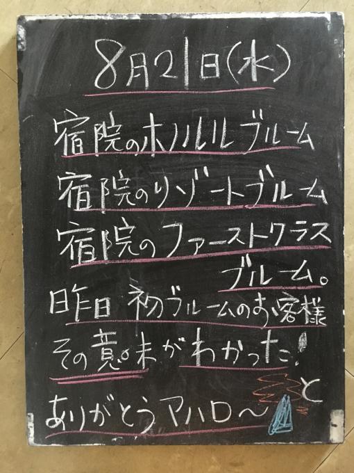 堺のリゾートSFR_f0152875_22383628.jpg