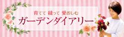 ◆ほんのり・・・_e0154682_00203595.jpg