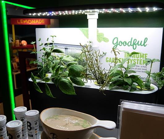 『室内で新鮮な野菜やハーブを育てる』のは世界的なトレンドかも?_b0007805_04484676.jpg
