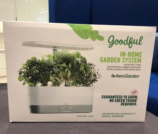 これまでの種植え、水やり、太陽も不要の未来のキッチン菜園⁉_b0007805_05051374.jpg