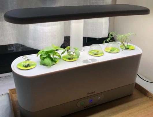 これまでの種植え、水やり、太陽も不要の未来のキッチン菜園⁉_b0007805_05265456.jpg