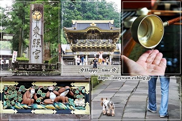 ハンバーグ弁当と旅日記②♪_f0348032_18143959.jpg