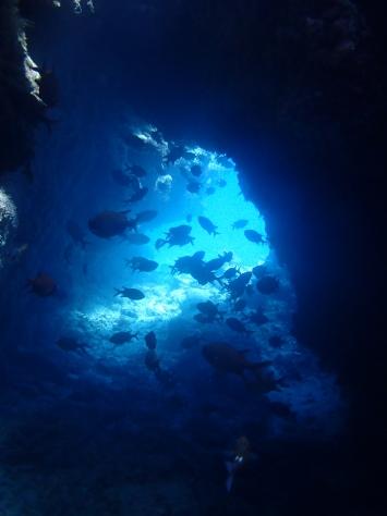 8月21日青の洞窟から水納島まで_c0070933_23051935.jpg