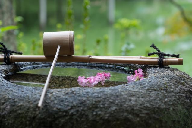 京都御苑の拾翠亭_e0369736_19505303.jpg