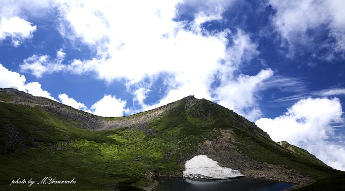 夏山と雲と森のクロジ_c0217255_06005480.jpg