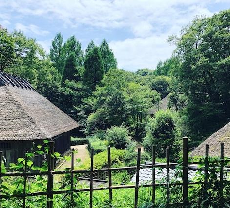 夏のお出かけ:民家園と縄文の村_b0087556_23004200.jpg
