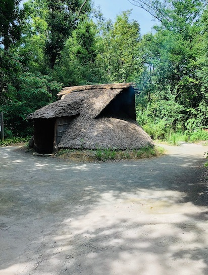 夏のお出かけ:民家園と縄文の村_b0087556_23004231.jpg