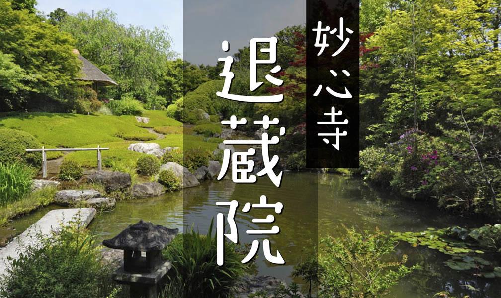 妙心寺 退蔵院(その4)余香苑_c0112559_07265829.jpg