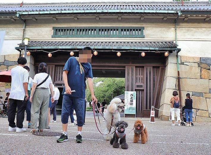 名古屋城夏まつり。_b0111376_15415621.jpg