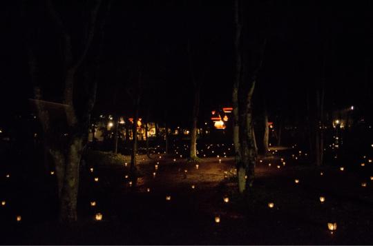 蝋燭夜_e0001906_15441347.jpg