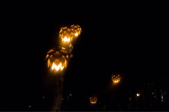 蝋燭夜_e0001906_15441438.jpg