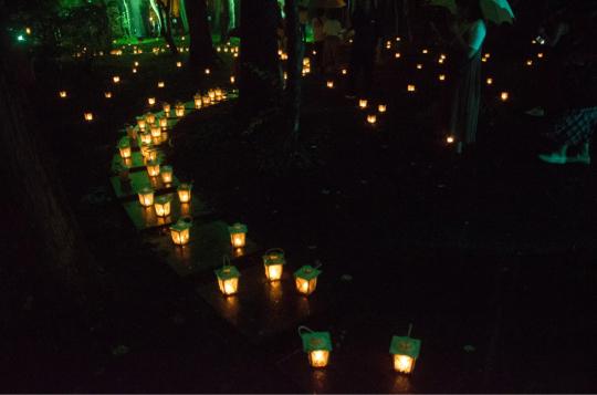 蝋燭夜_e0001906_15441819.jpg