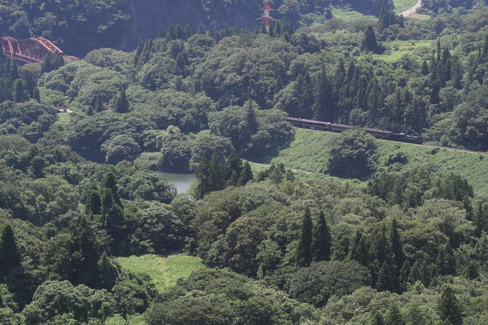 緑で埋め尽くされる視野 - 2019年夏・磐越西線 -_b0190710_21300577.jpg