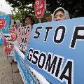 GSOMIA破棄 - 韓国は筋を通すべき、全責任は安倍日本にある_c0315619_13254620.png
