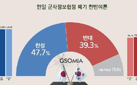 GSOMIA破棄 - 韓国は筋を通すべき、全責任は安倍日本にある_c0315619_13270405.png