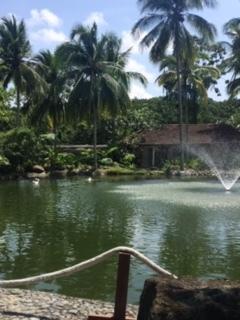「The Farm」フィリピンの SPA での夏休み♡_e0131324_21410593.jpg