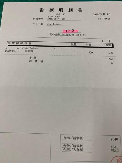 れんちゃん医療費の収支報告など_d0355333_14405675.jpg